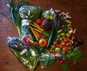 Reteta Salata de legume pentru iarna